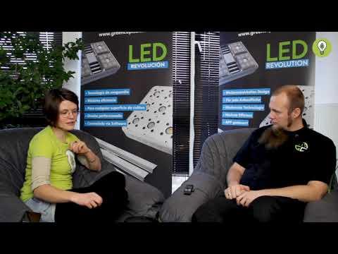 greenception-interview-teil-2/4-–-die-gc-serie