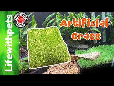 How To Use Artificial Grass In An Aquarium