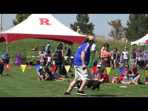 Reunion's Kite and Flight Festival