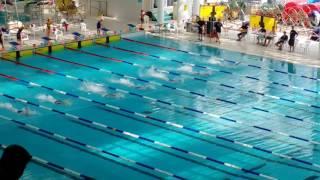 2016~2017全港小學校際游泳比賽50米自決賽第4線蕭濤
