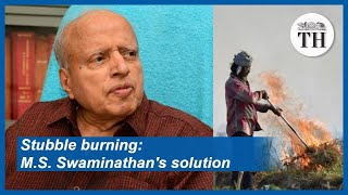 Stubble burning M S  Swaminathan's solution