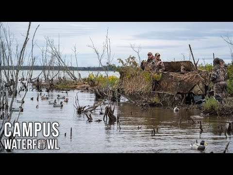 DUCK HUNTING on an ISLAND for Michigan's Duck Opener (CAMP OUT)