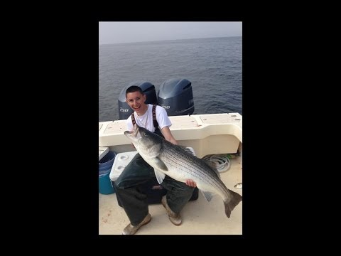 50 Pound Striped Bass Raritan Bay New Jersey