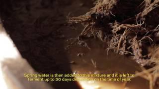 4 - Fermentation - Subtitulado