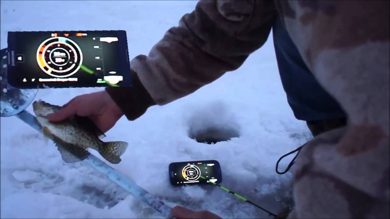 Недорогой эхолот для зимней рыбалки - YouTube
