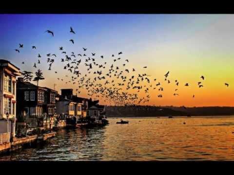 Tuluyhan Uğurlu - İstanbul Kanatlarımın Altında