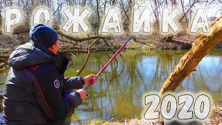 Рыбалка на Рожайке 2020 пробный выезд Поплавок