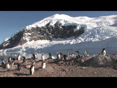 Antarctica Expedition Cruise Antarctic Peninsula