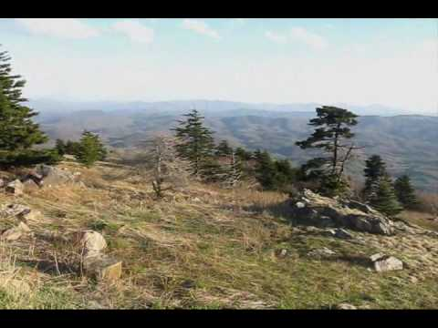 View from Whitetop Mountain, Virginia by JHF