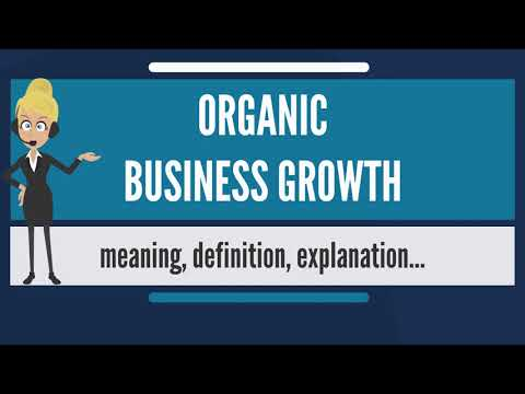 What is ORGANIC BUSINESS GROWTH? What does ORGANIC BUSINESS GROWTH mean?