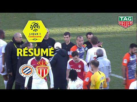 Montpellier Hérault SC - AS Monaco ( 2-2 ) - Résumé - (MHSC - ASM) / 2018-19