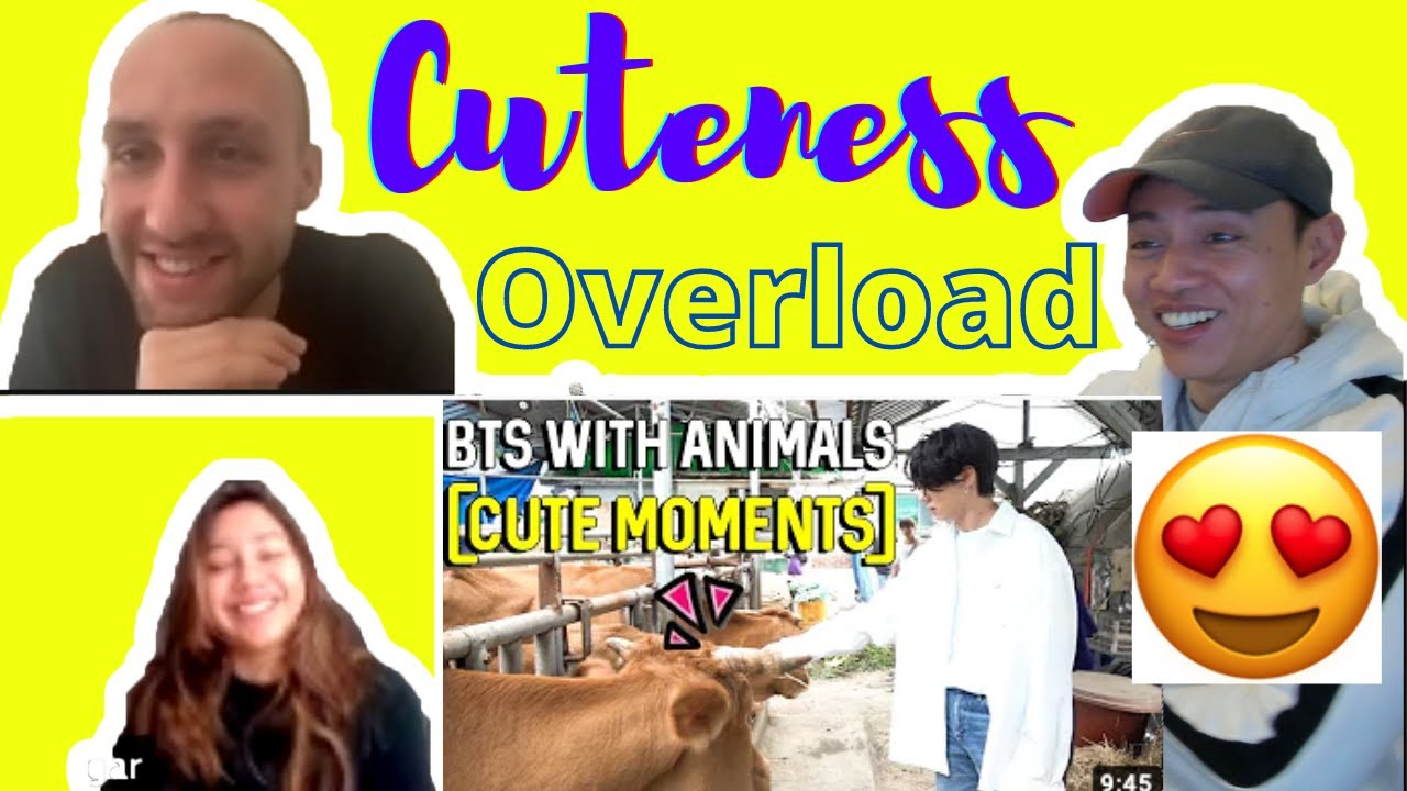 BTS (방탄소년단) | BTS With Animals [Cute Moments ] | BTS Funny moments | reaction video