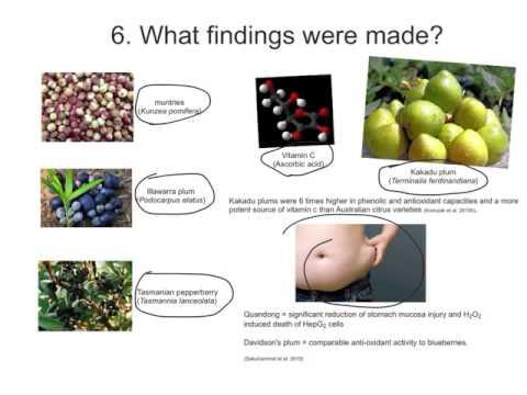 Research Literacies - Online Presentation