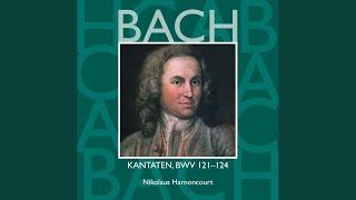 """Cantata No.123 Liebster Immanuel, Herzog der Frommen BWV123 : VI Chorale - """"Drum fahrt nur..."""