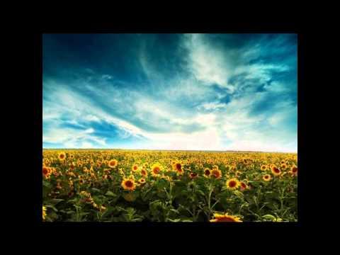 Song of Four Seasons (Shiki No Uta) - Departure -MINMI & Nujabes