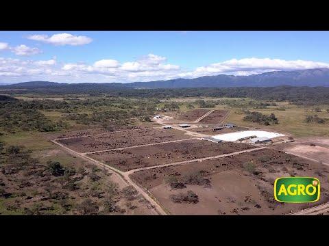 agricultura-de-precisión,-mega-feedlot-y-citricultura,-el-modelo-de-agsof-en-salta-(#826-2019-06-01)