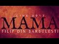 Filip din Barbulesti Dacă ai harul si ati trăiește Mama LIVE 2017