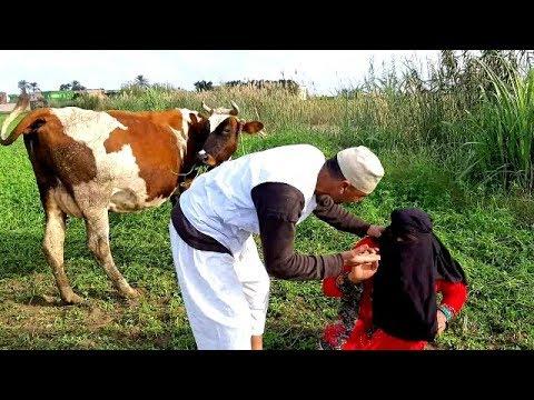 شاهد ماذا فعل الحاج مسعود في حسنين بسبب اخته تفاحة  / شئ غريب لن تصدقه/ شاهد واحكم بنفسك 😂😂