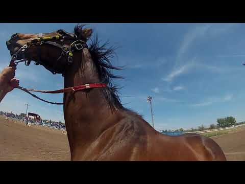 Fort Hall, Indian relay race go pro 2015