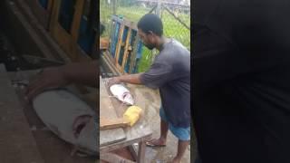Grenada fresh fish for dinner