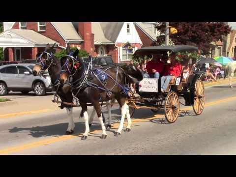 2015 Strawberry Festival - Horse & Carriage Parade