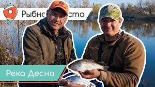 Рыбное место. Опоздавшие на плотву. Рыбалка на фидер весной.