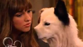 Собака точка ком   1 сезон, 4 серия