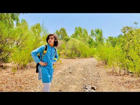 Download Rameez Jungle sa kaise nikhla    Jungle story    Naeem aw Rameez