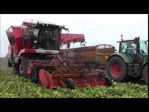 Agrifac sugarbeet harvesting.2014.wvm