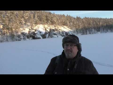 Охота в Карелии осенью и весной на кабана, оленя, лося