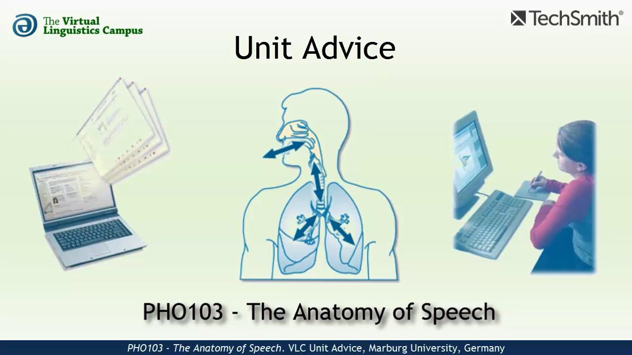 PHO103 - Unit Advice (Speech Anatomy) - YouTube