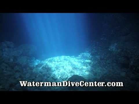 IDD Waterman Dive Center Cape Verde 2010