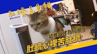 ◖肚臍是隻貓◗奴才吃錯藥 肚臍有苦說不出 ♪