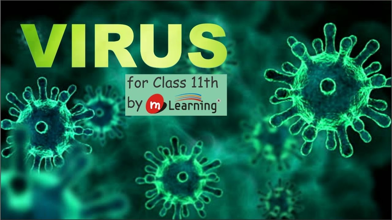 Virus: HISTORY OF VIROLOGY 01 For Class 11th and AIPMT