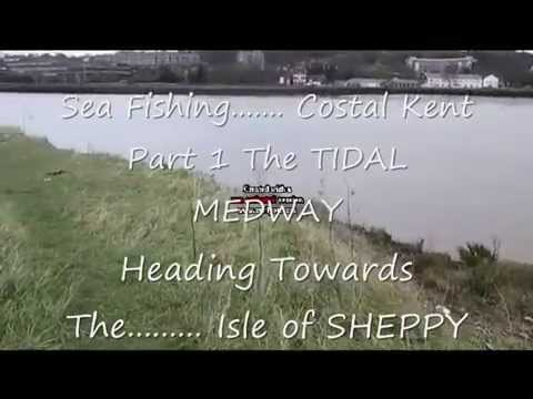 SURVIVAL FISHING Medway To Sheppy