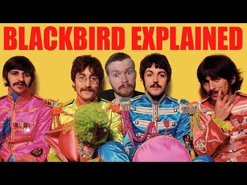 """Blackbird"" by The Beatles Lyrics Meaning EXPLAINED"