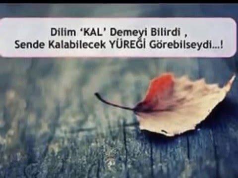 Yazili Ve Maraqli Sevgi Sekilleri 3 Youtube