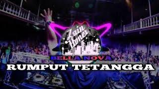 DJ RUMPUT TETANGGA JOGET FVNKY 2019