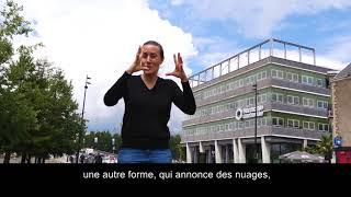 De temps en temps François Morellet  / vidéo en LSF