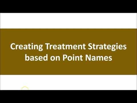The Wind Cannot Be Grasped Part IV:  Treatment Strategies Using Point Names