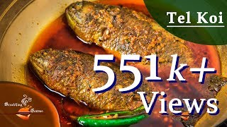 Tel Koi Recipe | তেল কৈ | How to make Best Tel Koi | Bengali Fish Curry Recipe
