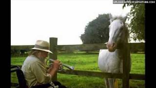 Robert Wyatt - East Timor