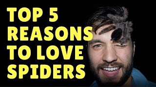 5 REASONS TO LOVE SPIDERS feat. ARACHNOPHOBIA MOVIE