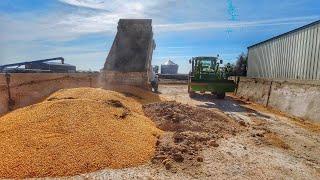 Farming In The Dakotas