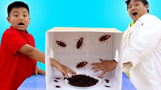 Alex Play Learning About Insects With Mystery Box Toy Challenge| Fun Insect Facts And Toys For Kids