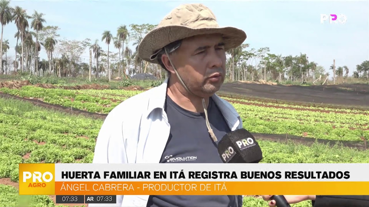 HUERTA FAMILIAR ABASTECE A SUPERMERCADOS