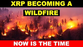 BEST PRICE TO BUY XRP? A WILDFIRE IS COMING FOR XRP; STAY ALERT; RIPPLE XRP NEWS ; XRP update