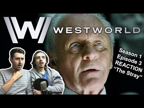 "Westworld Season 1 Episode 3 REACTION ""The Stray"""