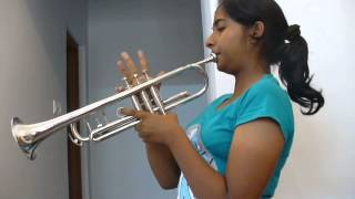 My heart will go on - trumpet cover.