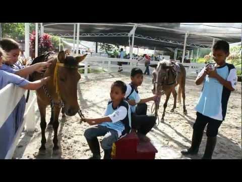Malaysia National Horse Show 2011